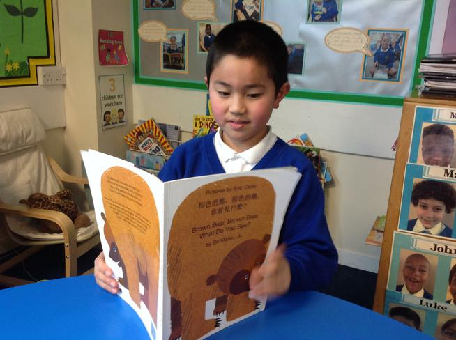 Some children read books in their home language.