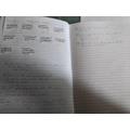 Rosa's English work
