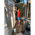 Dexter - painting the summer house.jpg