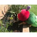 A spot of gardening