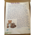 Amrit Year 5 story