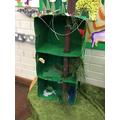 Rainforest models