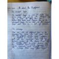 Ava's writing