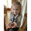 Delilah's rock investigation