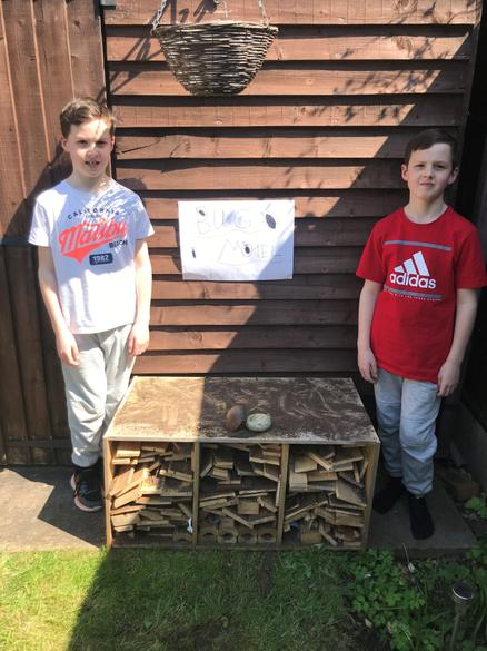 Bug hotel open for business!