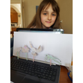 Mollie's amazing shadow puppets !