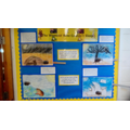 Our class story with moving parts