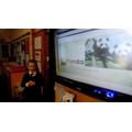 Endangered animals presentation