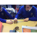 In DT we have been learning about pulleys.