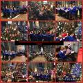 St Mary's Christmas Tree Festival