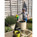 Harry watering his plants.