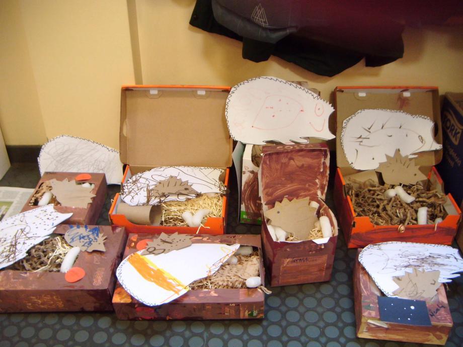 Hibernation boxes
