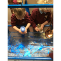 Making glittery water...