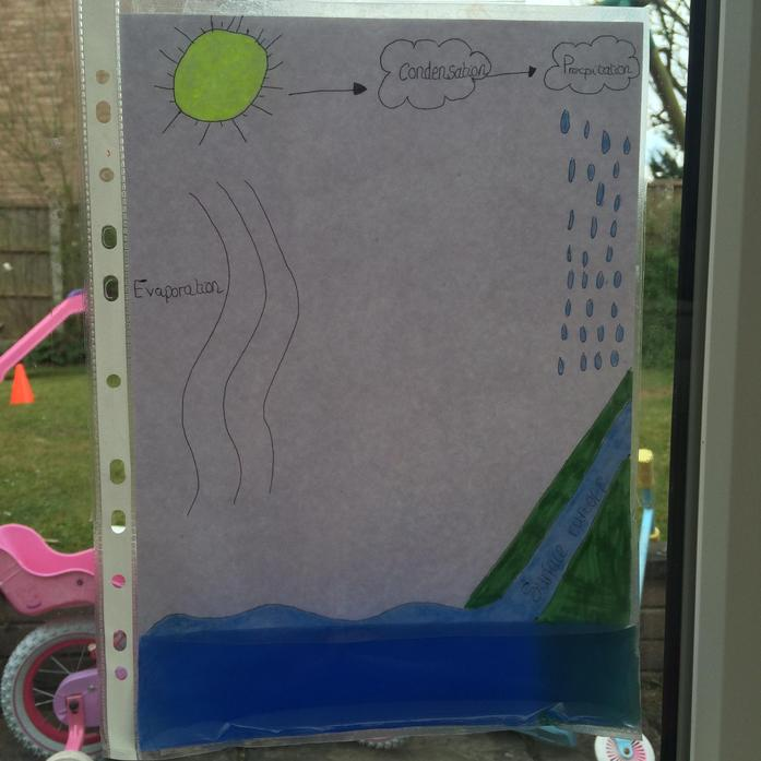 Maya's Water Cycle explanation in action
