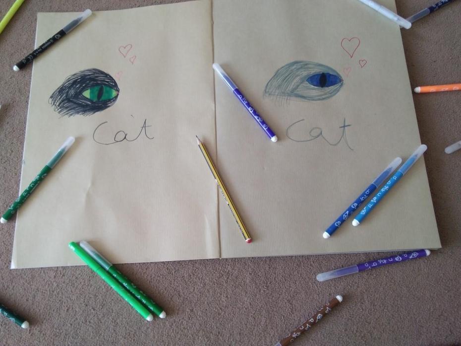 Aleksandra's drawing