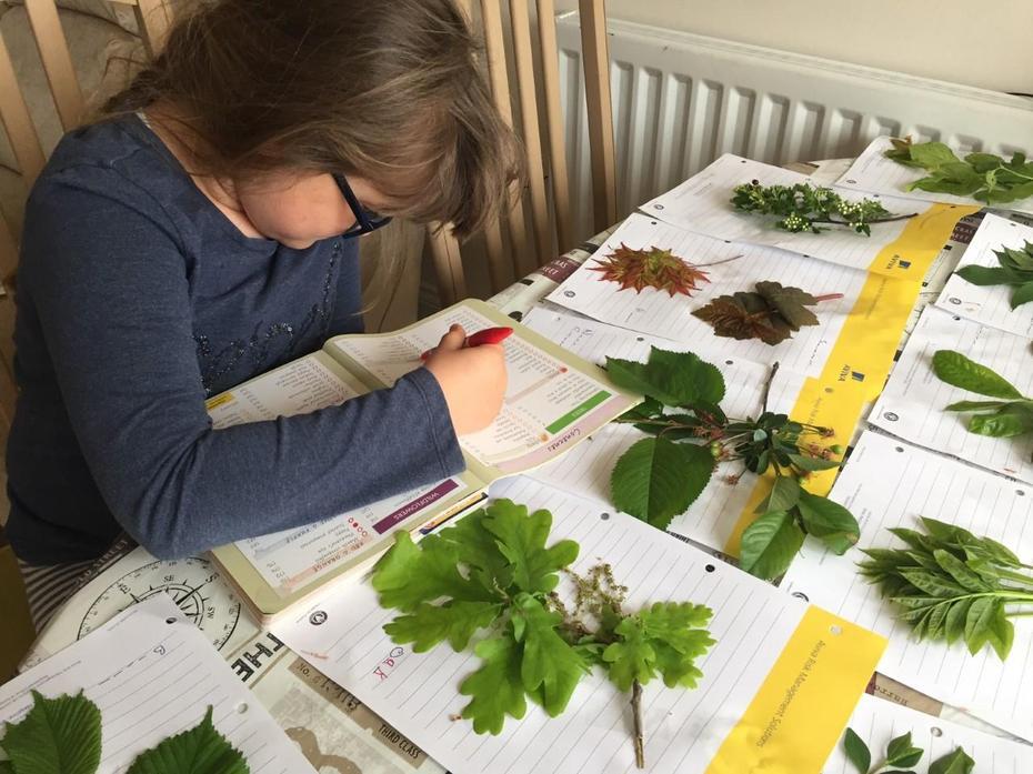 Researching different plants Aleksandra