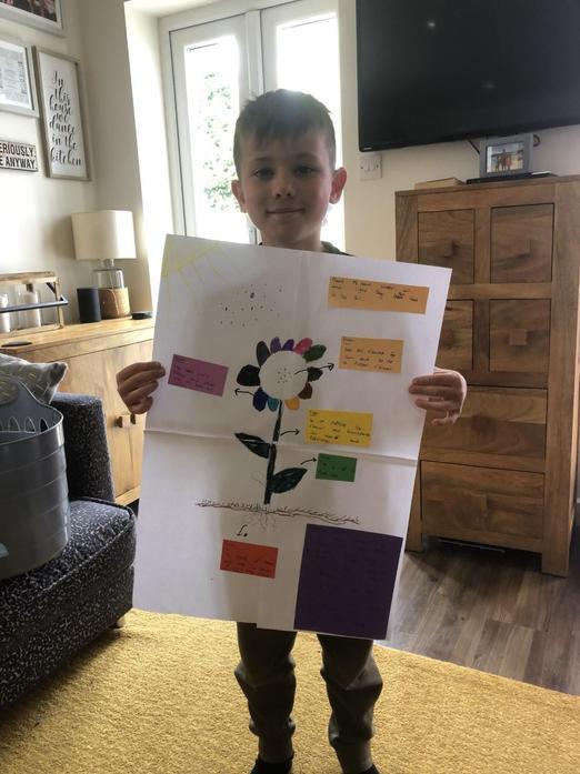 Frankie explaining pollination process