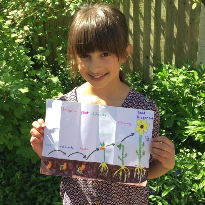 Neve and her flowering plant life cycle