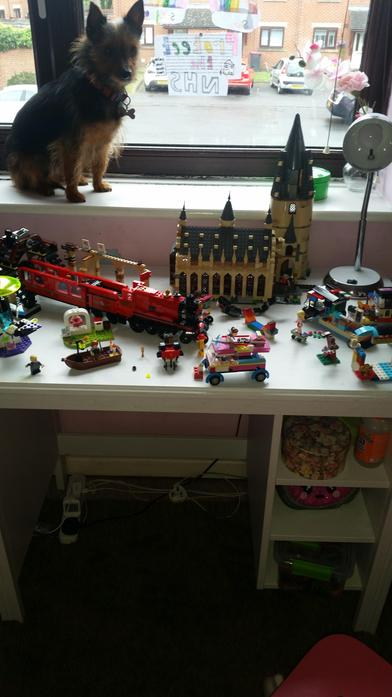 Michelle's Lego creations