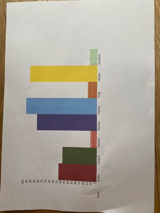 Alfie's Bar chart
