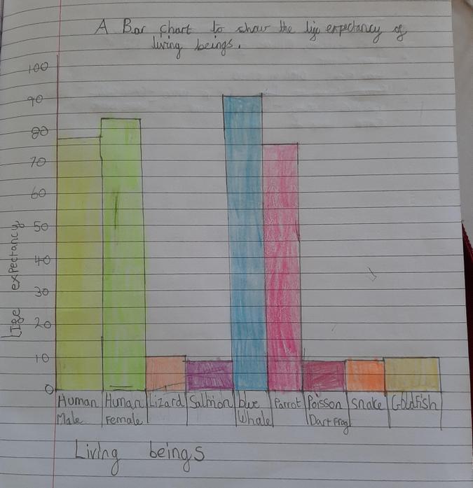 Casey-Leigh's Bar Chart