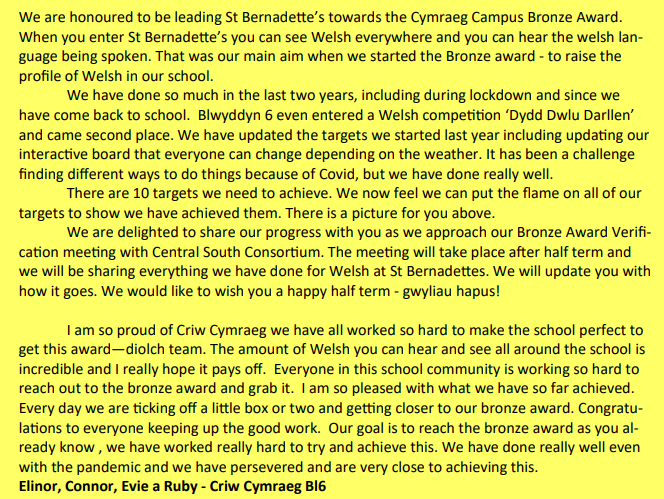 An update from Criw Cymraeg on our Cymraeg Campus Bronze Award