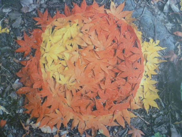 Maple Patch by Andy Goldsworthy
