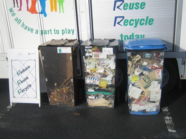 The Brown, Black and Blue Bins