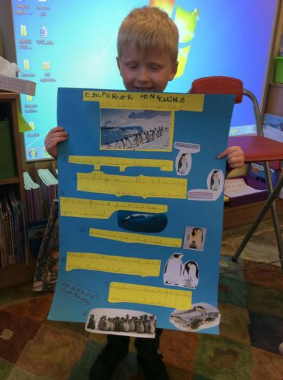 A super project on emperor penguins