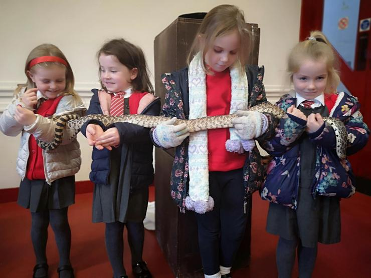 Look how brave the girls are holding the snake