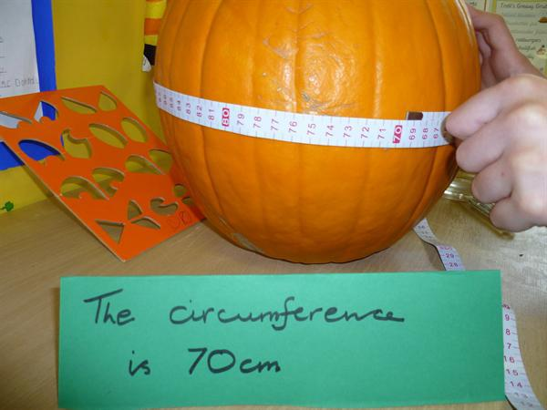 measuring the pumpkin