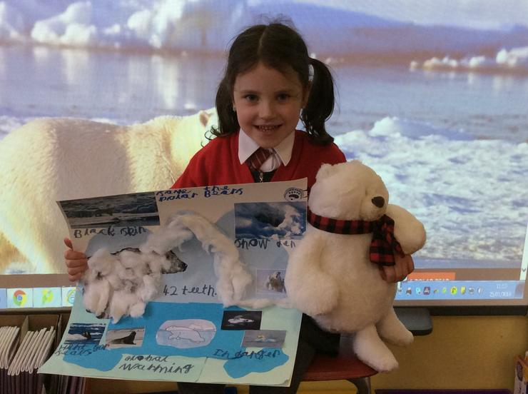 A super project on saving the polar bears