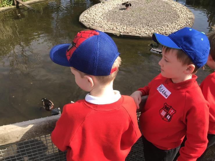 Matthew has spotted a hidden duck!