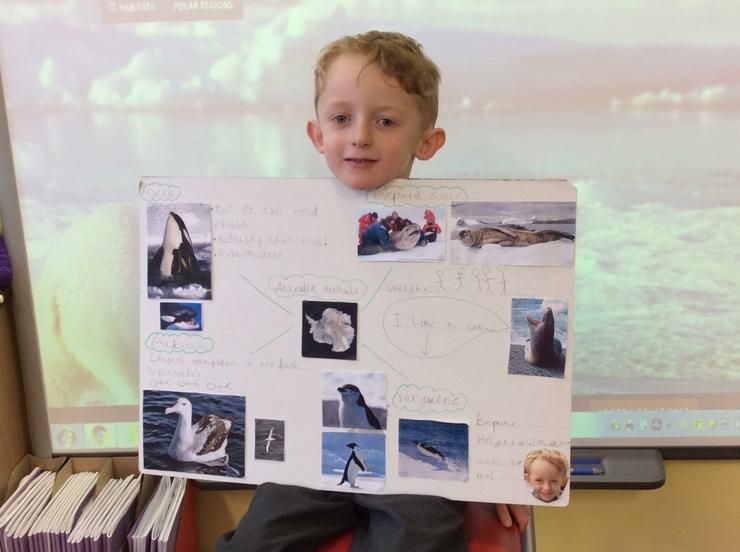 We learned so much about Antarctic animals