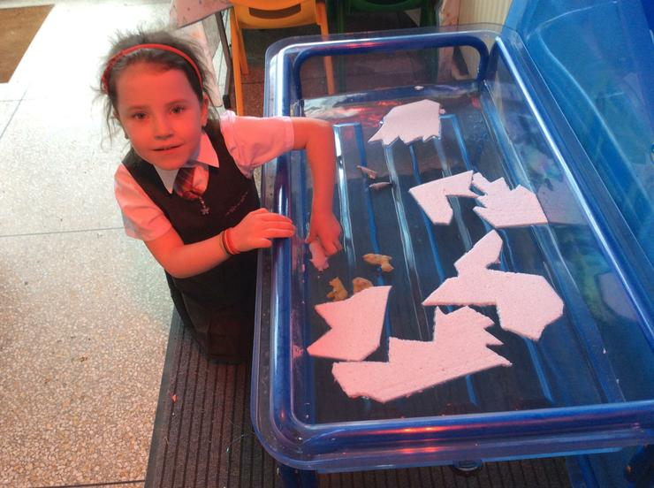 Icebergs and polar bears in the water tray