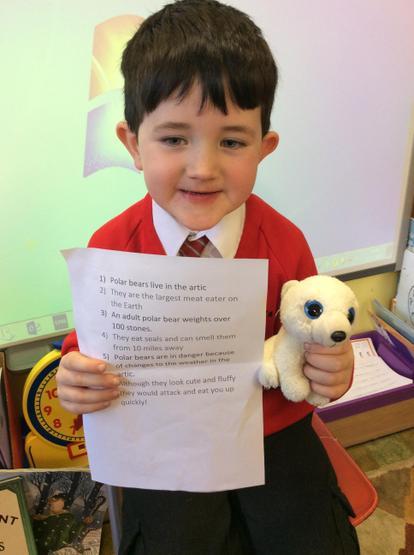 Wonderful research about Polar bears