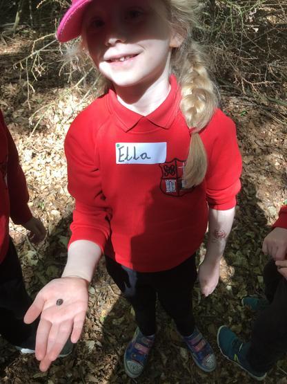 Ella found a millipede!
