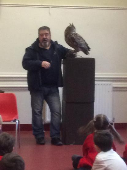 The Eagle Owl is the largest in the world