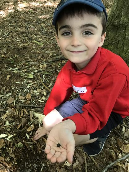 You found a millipede Luca!