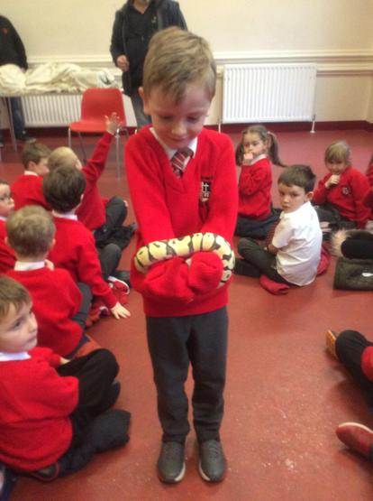 A snake behaved very well!