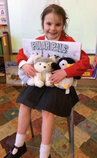 Three hand stuffed polar pals came to visit P2T