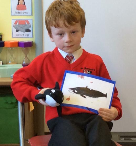 A super presentation on Orcas
