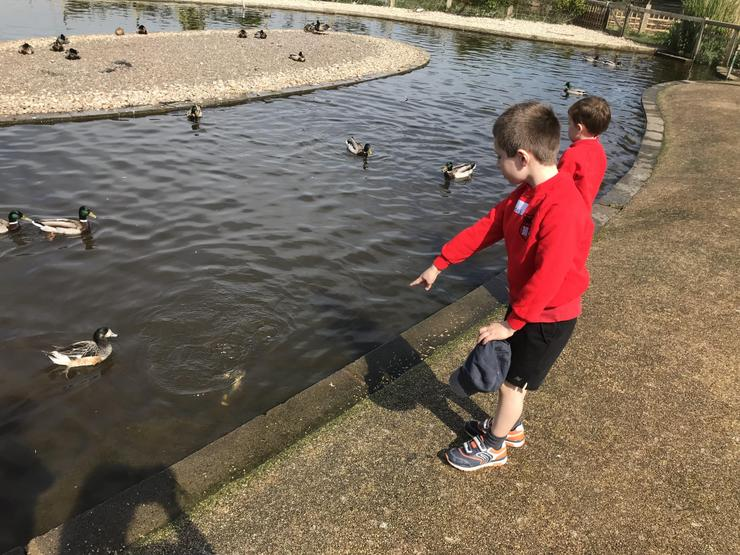 James has spotted a duck underwater!