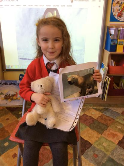We learned about Peter the polar bear