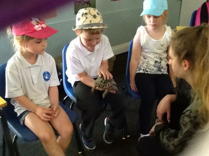 handling animals at Tattershall Farm Park