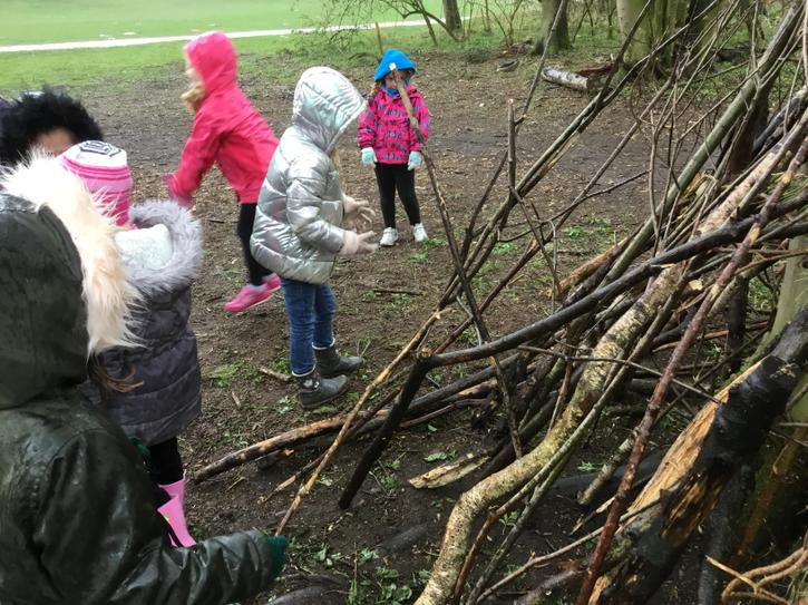 Shelter/den building