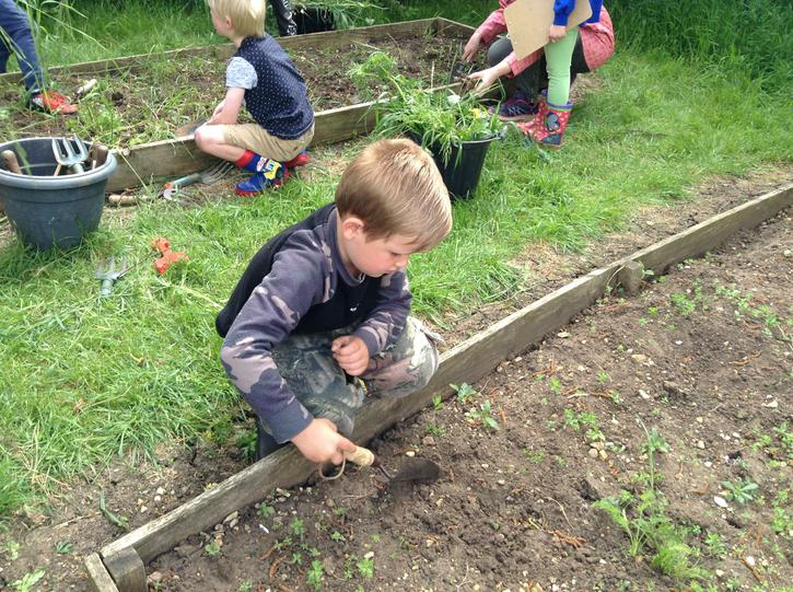 Our Gardening Day