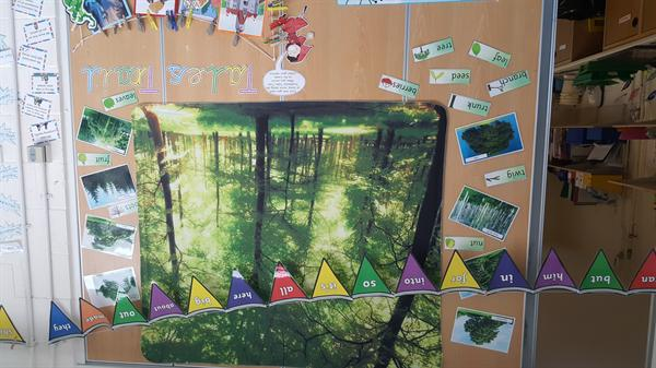 Year 1a Classroom T5