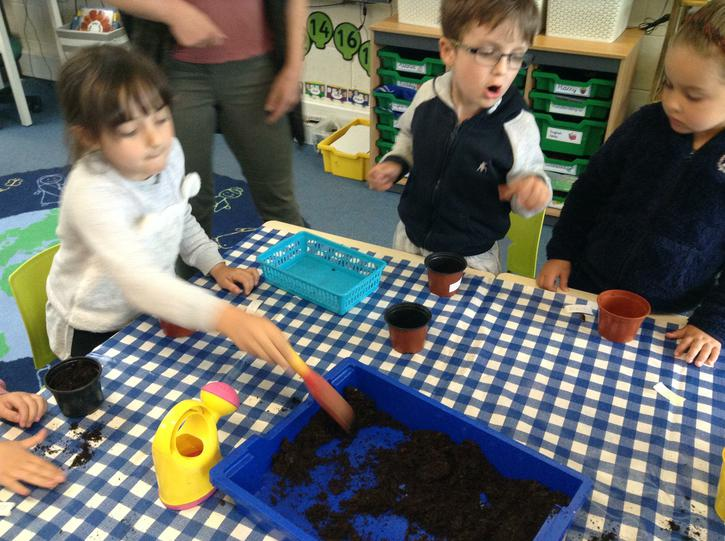 Planting our seeds
