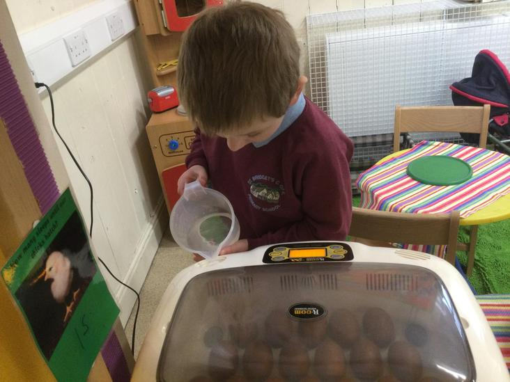 Topping up the incubator